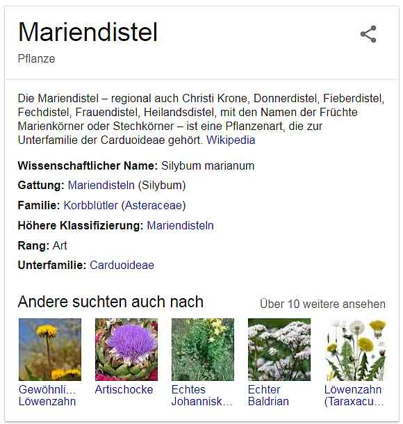 Natürliche Mittel Mariendistel-Googlesuche©