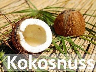 Kokosnuss Trivia natürlich und gesundes Lebensmittel was steckt drin?